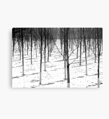 Winter army Metal Print