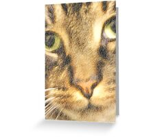 Pussy Cat Greeting Card