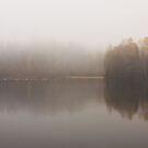 Autumn Memories 01 by Anders Naesset