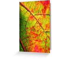 Vineyard Leaf Greeting Card