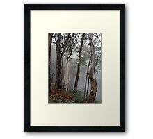 Ghosts in the Mist - Victorian Alps, Victoria Australia Framed Print