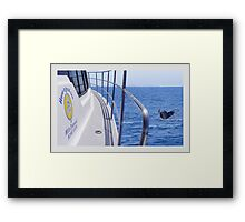 Whale of a time Framed Print