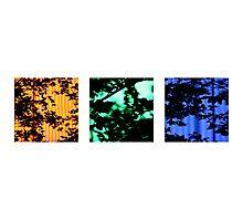 neon trees Photographic Print