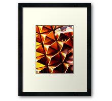 Front-liner Framed Print