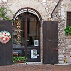 Little Shop In Pest by phil decocco