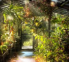 In the greenhouse by Mike  Savad