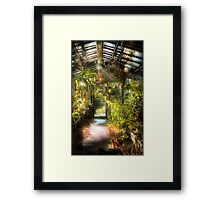 In the greenhouse Framed Print