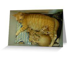 Ginger Love Greeting Card