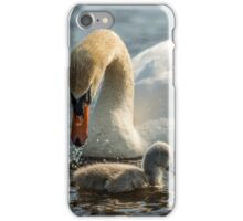 Wild mute swan and baby cygnets iPhone Case/Skin