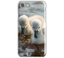 Wild Baby Cygnets iPhone Case/Skin