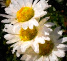 Painted Daisy's by HouseofSixCats
