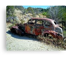 Rust in the Owyhees Canvas Print