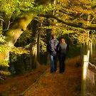 autumn stroll by kathywaldron