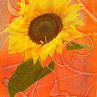 sunshine by KittyHerb