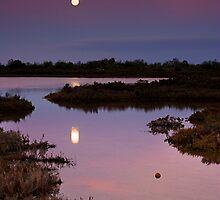 Full Moon by KathyT