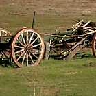 Dilapidated Wagon by Laura Puglia