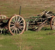 Dilapidated Wagon by Laurie Puglia
