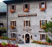 Maison de la Montagne by parischris