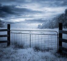 Beyond Blue by Annette Blattman