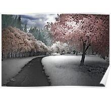 Parkland Path Poster