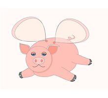 GLASSWINGED PIG Photographic Print