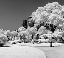 Parc de la Citadella 2 by Troy Dodds