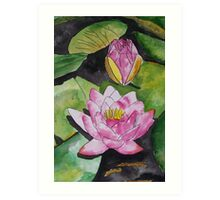 water lily flower pad Art Print