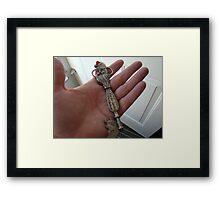 A key for Santa Framed Print