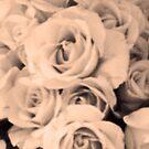 Roses IV by Bernadette Claffey
