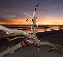 "A Beach Bum's Christmas Tree by Arthur ""Butch"" Petty"