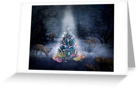 Christmas Day in the forest by Kurt  Tutschek