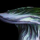 Brassica Fantastica by Yampimon