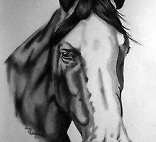 BPH Ismalia by Penny Edwardes