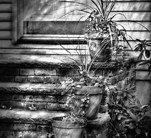 Three Pots by Mike  Savad