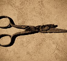 Scissors by Jean-François Dupuis