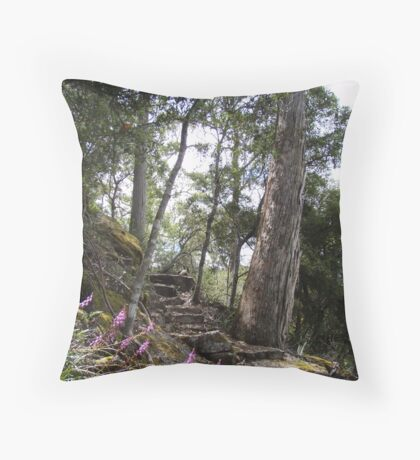 track upwards to the Falls at Wilmot Throw Pillow