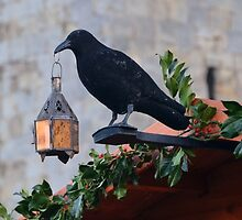 Jackdaw Lamp Holder.......... by lynn carter