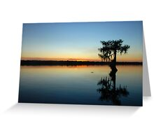 Silent Night in the Deep South Greeting Card