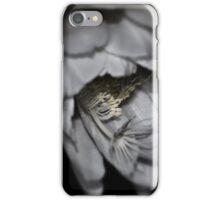 Epiphyllum oxypetalum II iPhone Case/Skin