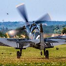 Spitfire Unleashed by Colin Smedley