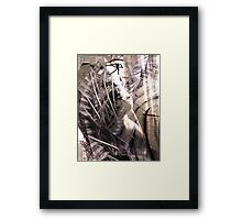 Beauty is in the eye of the Horus Framed Print