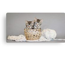 2 Tabby Kittens in Yarn Basket Canvas Print