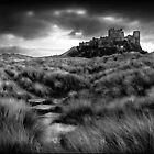 Bambourgh Castle - Winter by ab1727