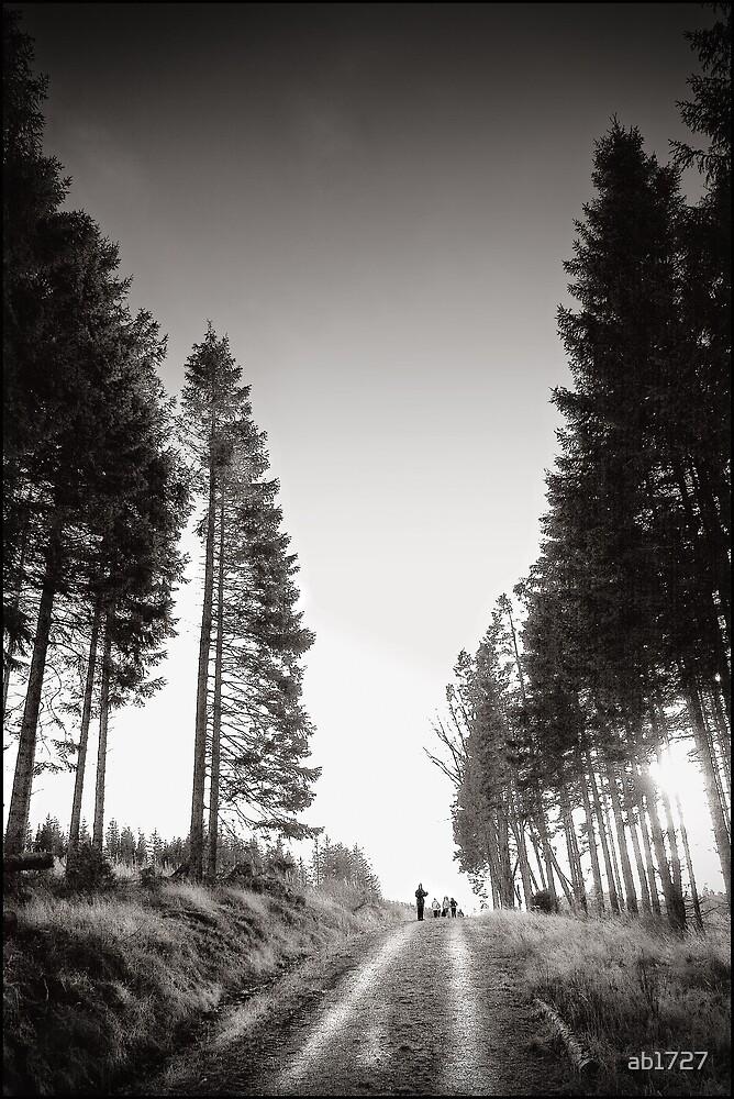 Winters Walk by ab1727