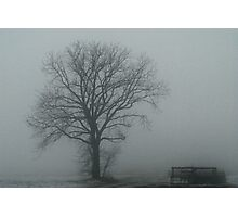 Feeling so lonely .... Photographic Print
