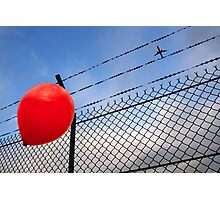 barbed freedom Photographic Print