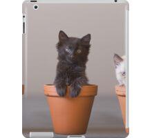 Bloomin' Meowers iPad Case/Skin