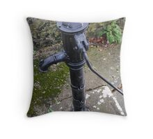 AN OLD IRISH WATER PUMP Throw Pillow