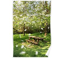 Spring picnic table Poster