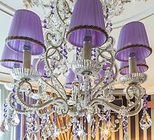 crystal chandelier with shade by mrivserg
